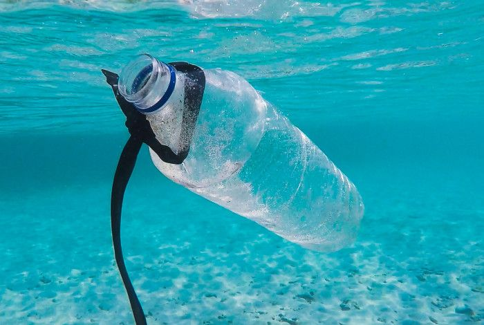 plastic water bottle floating in the ocean